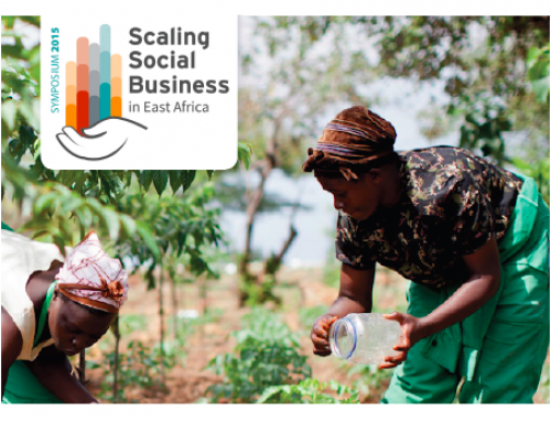 Can we improve the ecosystem of support to social enterprises? Lets challenge the status quo!